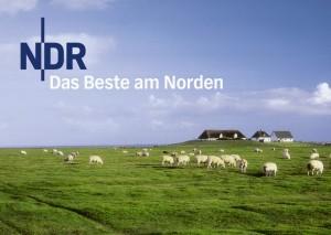 Fieser Schachzug: Gefälschte Pressemitteilung gegen den NDR-Programmdirektor